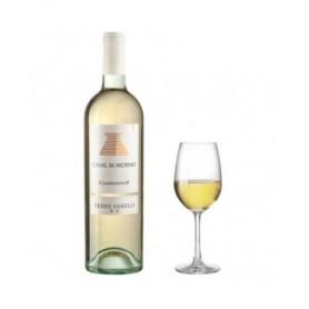 Vino Terre Sabelli - Chardonnay - Casal Bordino