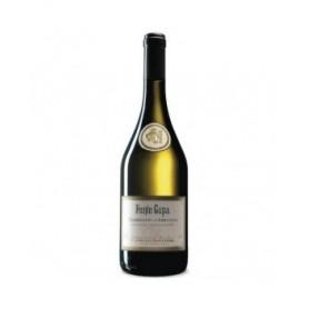 Vino Bianco Trebbiano d'Abruzzo DOC Fonte Cupa Montori